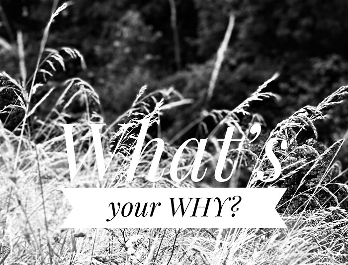 ©Valleur Tekst & Communicatie - What's your why?